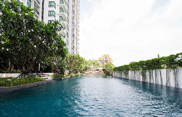 The-Room-Sukhumvit-62-Bangkok-condo-for-sale-swimming-pool-2